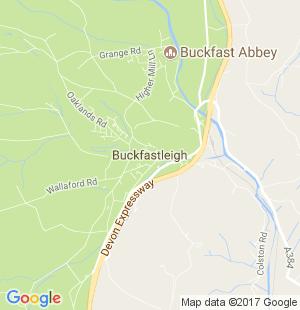 Swingers in buckfastleigh